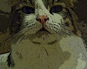 Walter Kitty