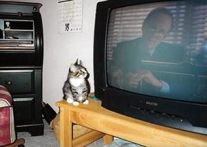Montero watching Law & Order sm