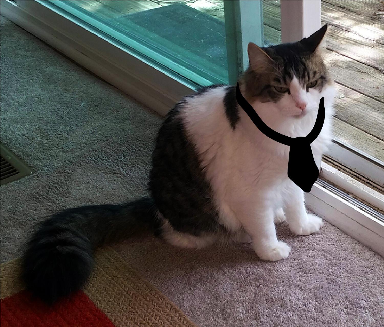 Walter wearing a tie