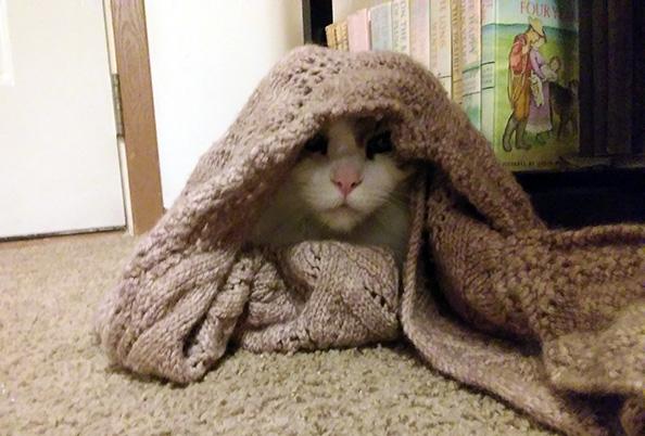 Walter undercover