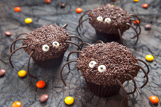 Chocolate spider cupcakes for Halloween party